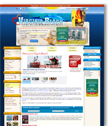 Virginia Beach Website