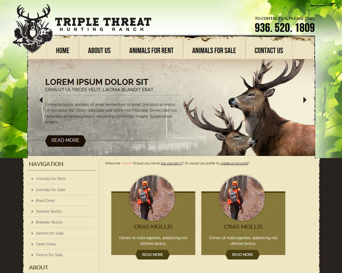 UNDER CONSTRUCTION! From the owners of AmmoToGo and Independence Firearms comes Triple Threat Ranch.  This website is an ecommerce site that specializes in the sale and rentals of animals for hunting lodges.  http://www.t3whitetails.com