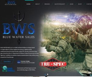 Blue Water Sales Web Design Project