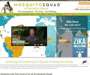Mosquito Squad of Hampton Roads Web Design Project