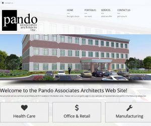 Pando Associates Web Design Project