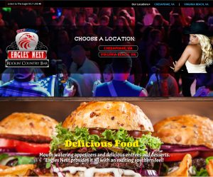 Eagles Nest Rockin Country Bar Web Design Project